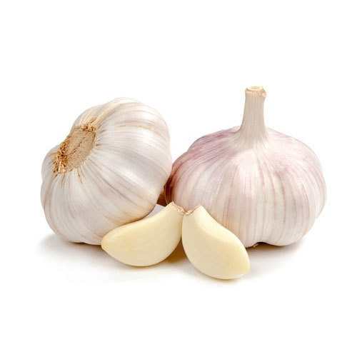 fresh-garlic-500x500