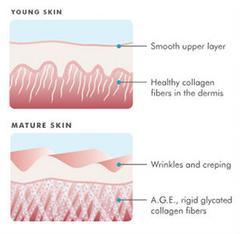 glycation_youngskin_mature_skin_medium