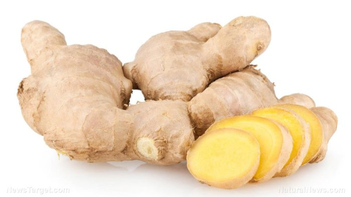 Ginger-Root-Isolated-White-Background